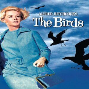 Kuşlar – The Birds (korku filmi önerileri)